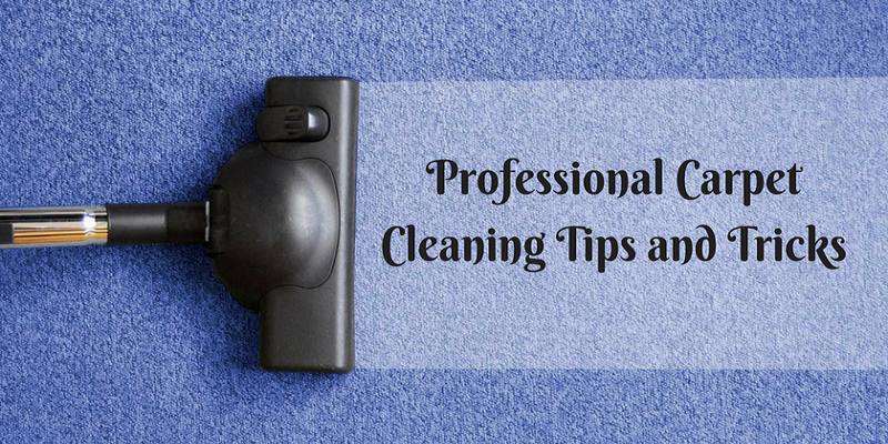Professional Carpet Cleaning Tips and Tricks