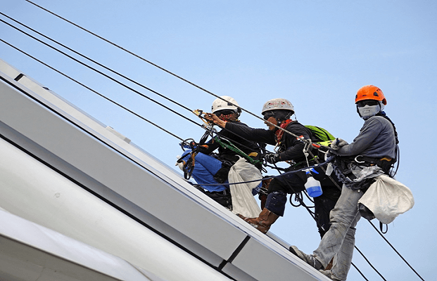 Which Safety Harness Should I Buy?